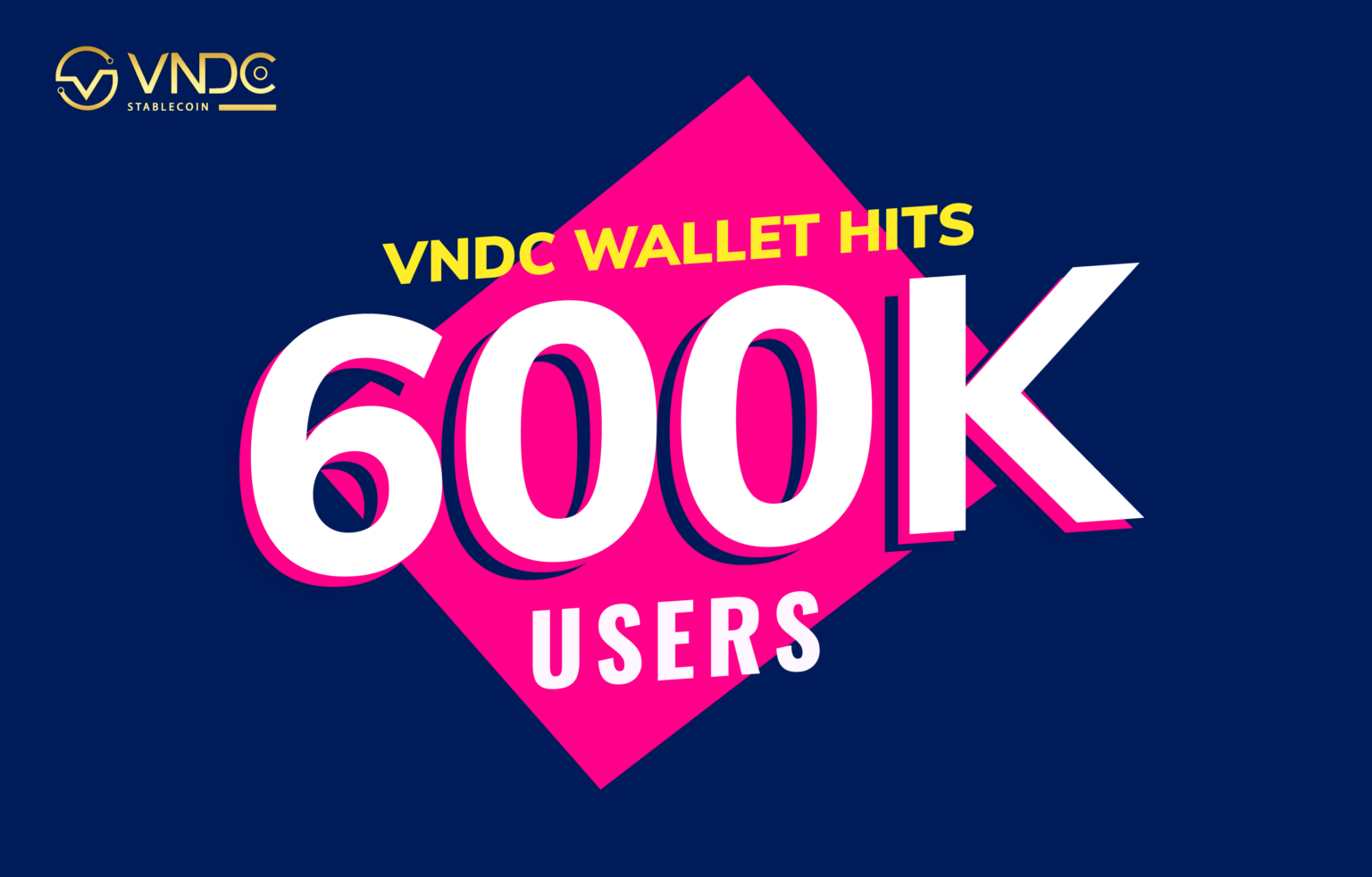 VNDC Wallet hits 600K users after 5 months of launch