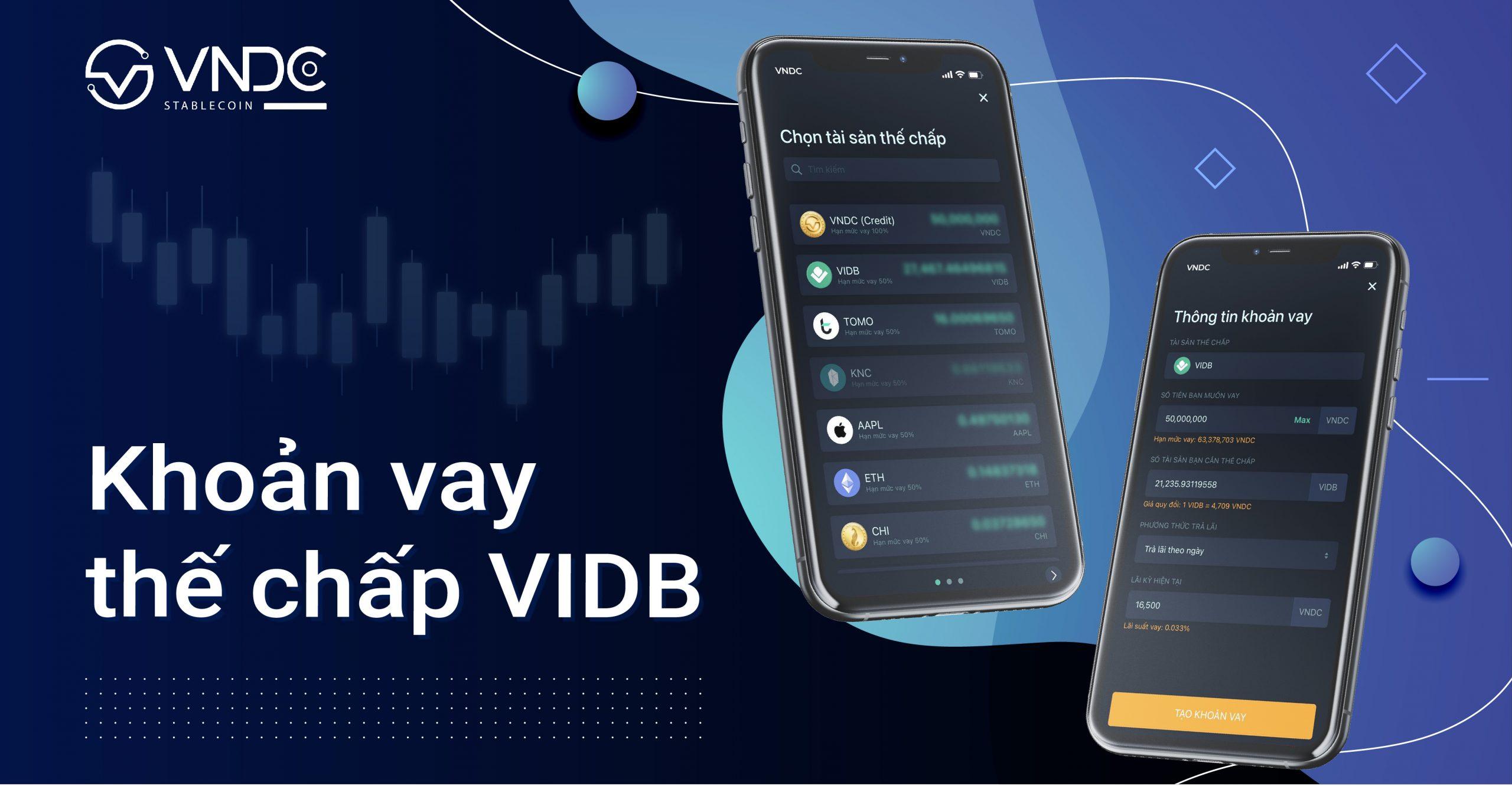 Sử dụng VIDB làm tài sản thế chấp để tạo khoản vay
