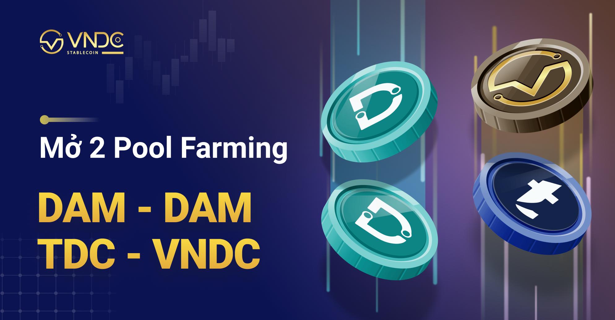 Mở 2 Pool Farming DAM – DAM và TDC – VNDC