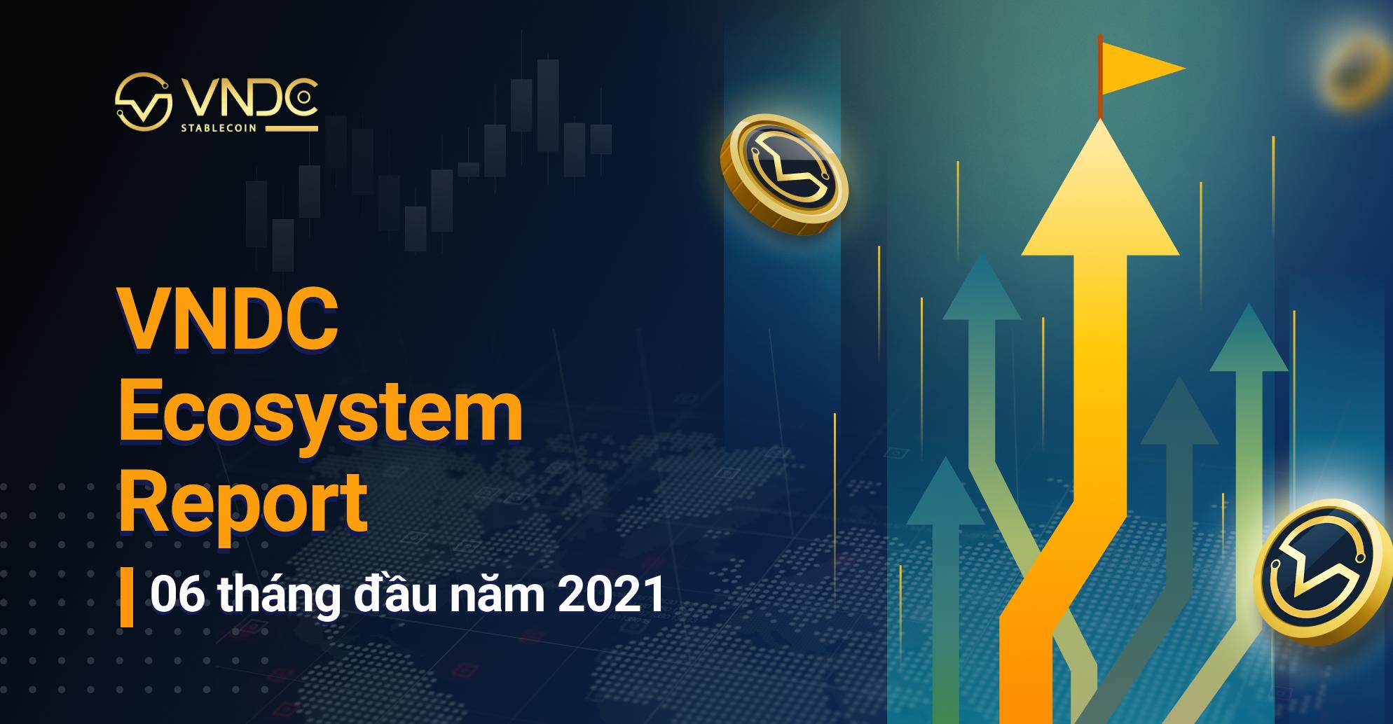 VNDC công bố VNDC Ecosystem Report 06 tháng đầu năm 2021